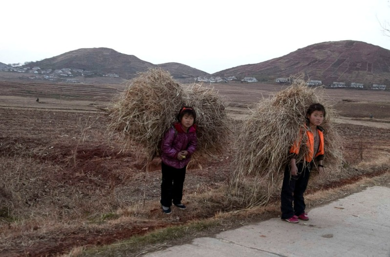 north-korean-farm-laborers